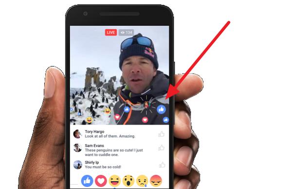 20160408 facebook live stream (4)