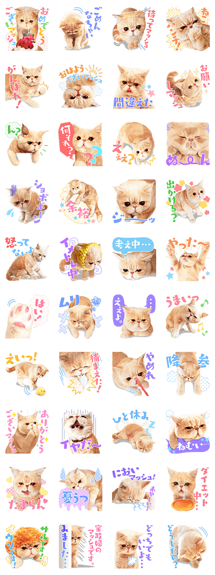 20160425 line stickers (17)