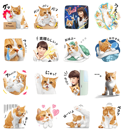 20170124 FREE LINE STICKERS (5)